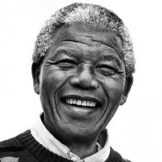 Image for Questioning Democracy: Thucydides and Mandela